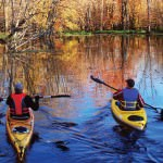 Grey County Kayaking